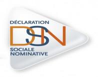 Logo DSN Déclaration Sociale Nominative